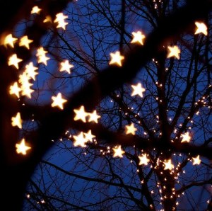 tree and star (2)